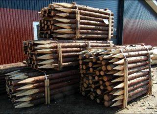 Gran hegnspæle med spids - 4 længder - SkovTrup lagerbillede Læs mere om Rødgran her!